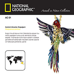 National Geographic - Animals in Nature - Papağan Kolye